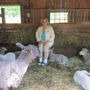 LISA WITH SOME OF HER SHEEP